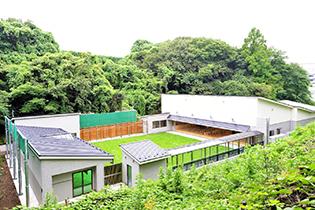 弓術新道場.jpg